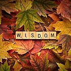 WISDOM-Autumn by onyonet photo studios