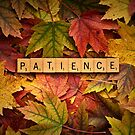 PATIENCE-Autumn by onyonet photo studios