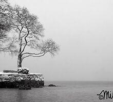 Winter Outlook by milkayphoto