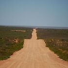 The Outback Track - Western Australia by cactus82