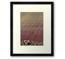 Baby Painted Hills Framed Print