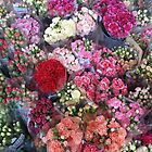 Colorful flowers in the market by Jeff Knapp
