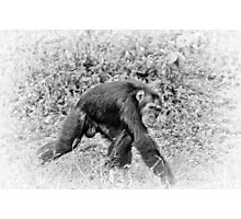 """Walking"" (B&W) Photographic Print"