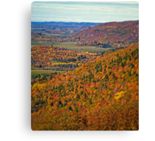 Canopy of Orange Leaves in the Ottawa Valley Canvas Print