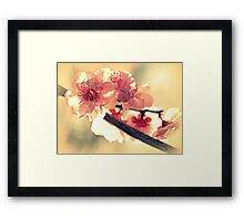 Spring of 2012 Framed Print