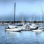 Sailing Marina by Shari Mattox