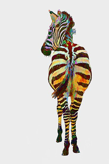Colorful Zebra by Teresa Zieba