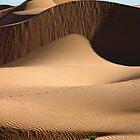 Dune 02 by Yannick Verkindere