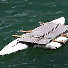 Raft by GayeL Art