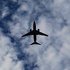 I'LL FLY AWAY by Shanklinthomas