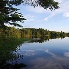 Dodge Pond by Shanklinthomas