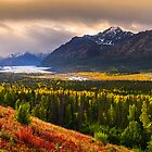 Fall in Alaska by Noppawat Charoensinphon