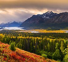 Fall in Alaska by Noppawat Charoensinphon