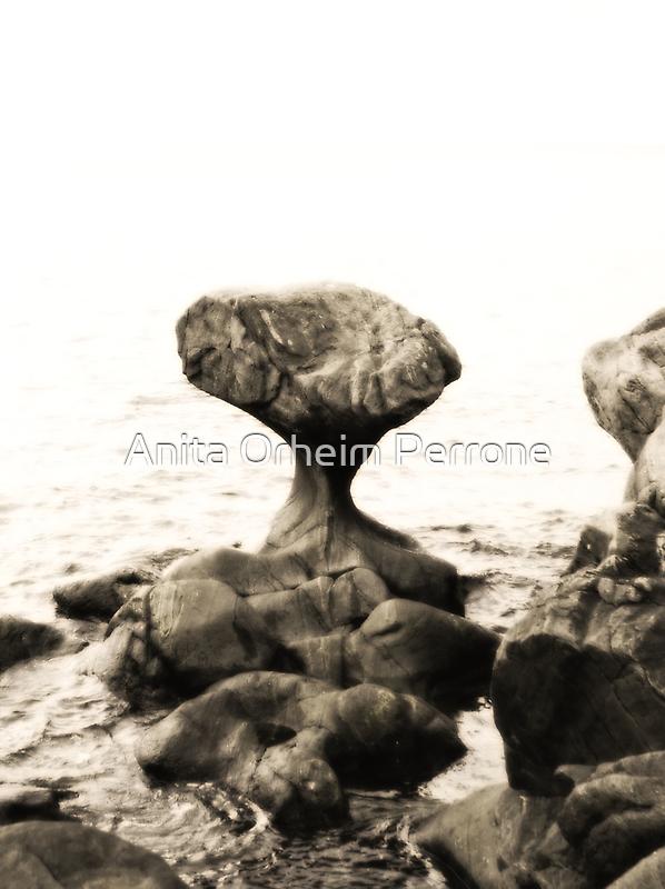 Kannesteinen by Anita Orheim