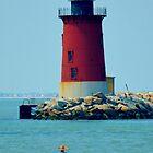 Cape Henlopen Lighthouse by BeachBumPics