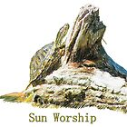 Sun Worship by MStrause