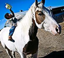Cowboy kid by Roxanne Weber