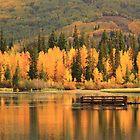Autumn Calm by Gene Praag