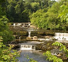 Aysgarth Falls by Imager