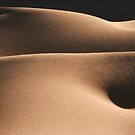 Sand waves - 3 by Yannick Verkindere