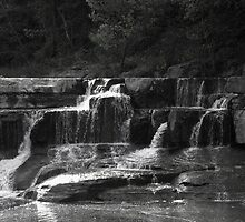 Lower Taughannock Falls by Mark  Reep