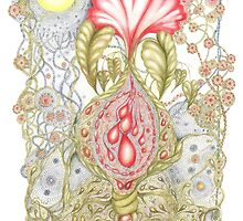 Florabundance by Helena Wilsen - Saunders