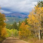 Rocky Mountain Scenic Autumn Drive by Bo Insogna