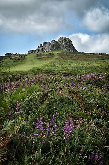 Haytor by Michael Carter