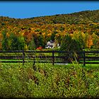 Fall Landscape On the Other Side of the Fence by Chantal PhotoPix