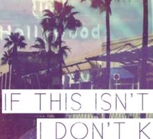 The Vonnegut - Palm Trees Sticker