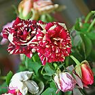A Couple of Tiger Roses by Nira Dabush