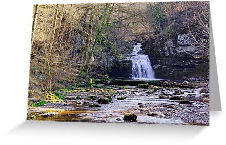 Cauldron Falls, West Burton, Bishopdale, Yorkshire Dales by Trevor Kersley