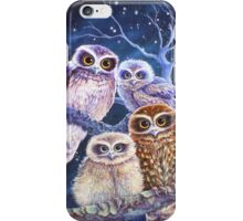 Boobook Owl Family iPhone Case/Skin