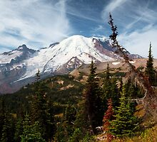Early Autumn at Rainier National Park by Mikhail Lenitsyn