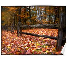 Cedar Log Fence on a Carpet of Autumn Leaves Poster