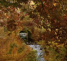 Autumn Colours  by Irene  Burdell