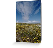 Spring is Beautiful Greeting Card