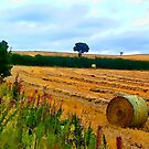 Farmland 1 by RicIanH