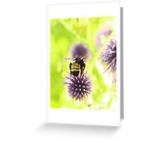 Bumble and Thistle Greeting Card