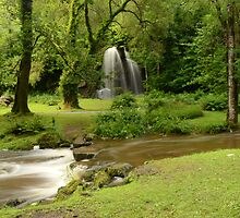 Kilfane Waterfall   by Martina Fagan
