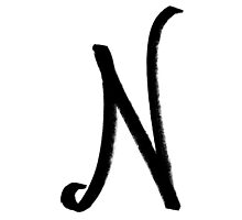 The Letter N by alphabeautiful