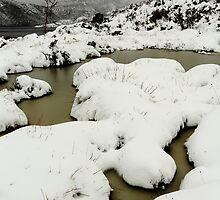 blizzard... by David Murphy