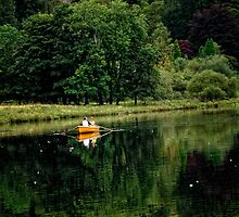 Rowing on the lake by Karen  Betts
