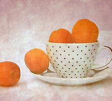 apricots by Angela Bruno