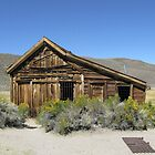 Bodie Jail by Angela Micheli Otwell