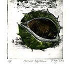 horse chestnut Aesculus historical look artprint by Veera Pfaffli