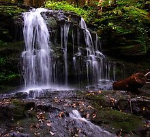 Hidden Waterfalls of Wayne County # 1 by Debra Fedchin
