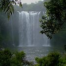 Rainbow Falls,  Kerikeri, New Zealand by Roy  Massicks