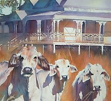 Brahmans of the valley by Natasha Hodgson