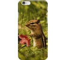 Chipmunk iPhone Case/Skin